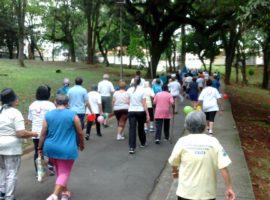 """Programa """"Novos Passos""""- instituições de pessoas idosas"""